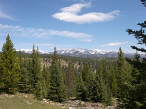 Additional photo for property listing at Private Towering Pines Acreage Towering Pines Lot 14 Big Sky, Montana 59716 United States