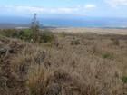 Terreno for sales at Breathtaking Ocean and Outer Island Views on 10.9 Acres Off Kanaio-Kalama Park Kula, Hawaii 96790 Estados Unidos