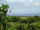 Terreno for  sales at Tropical Waterfall Estate Kuhio Hwy.   Kilauea, Hawaii 96754 Stati Uniti