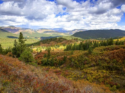 Farm / Ranch / Plantation for sales at Elk Park Ranch 371 CR 247 Durango, Colorado 81301 United States