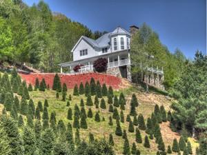 Single Family Home for Sales at Mountain Splendor 4221 Bethel Road Sugar Grove, North Carolina 28679 United States