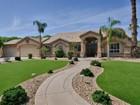 Nhà ở một gia đình for sales at Fabulous Custom Equestrian Property With Mountain Views 2226 E Riverdale Street  Mesa, Arizona 85213 Hoa Kỳ