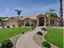 Einfamilienhaus for sales at Fabulous Custom Equestrian Property With Mountain Views 2226 E Riverdale Street   Mesa, Arizona 85213 Vereinigte Staaten