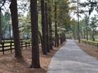 Farm / Ranch / Plantation for  sales at 1382 Linden Road   Pinehurst, 노스캐놀라이나 28374 미국