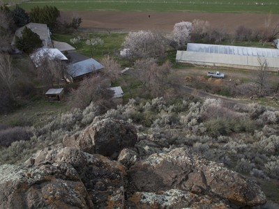 Fazenda / Quinta / Rancho / Plantação for sales at Tropical Fruit Farm 4785B River Road Buhl, Idaho 88331 Estados Unidos