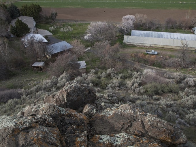 Farm / Ranch / Plantation for sales at Tropical Fruit Farm 4785B River Road Buhl, Idaho 88331 United States