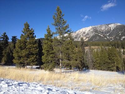 Terreno for sales at Antler Ridge Homesite 216 Fourpoint Road  Big Sky, Montana 59716 Estados Unidos