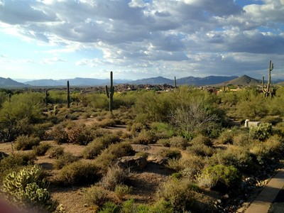 Terreno for sales at Exceptional Elevated Lot with City Light, Sunset & Mountain Views in Estancia 28058 N 103rd Place #162 Scottsdale, Arizona 85262 Estados Unidos