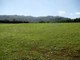 Property Of Waipake Ag subdivision