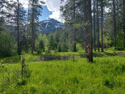 Land for sales at Spectacular Ski-In/Ski-Out Lot 7730 N Lower Granite Ridge  Teton Village, Wyoming 83025 Vereinigte Staaten