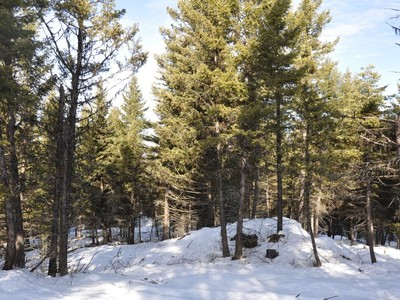 Terreno for sales at 13 Timbered Acres NHN Tamarack Creek Rd Tract 3 Whitefish, Montana 59937 Estados Unidos