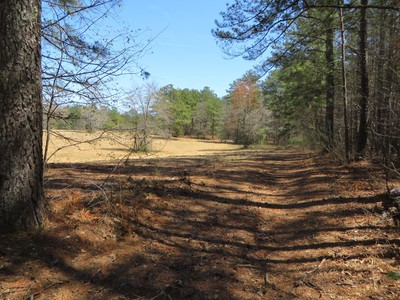 Land for  at Large 29 Acre Parcel Prime For Residential Development 7350 Herndon Road Fairburn, Georgia 30213 United States
