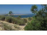 Property Of View of the Bassin d'Arcachon exceptional villa on
