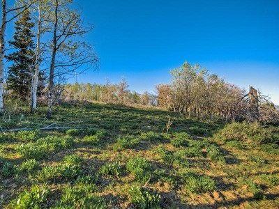 Land for sales at Apex Stagecoach Estate lot 11110 N Hailes Loop Lot#1  Park City, Utah 84098 United States