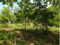 Земля for sales at Bluff Crest Estates Lot 5 & 6 Wendy Lane   Friendsville, Теннесси 37737 Соединенные Штаты