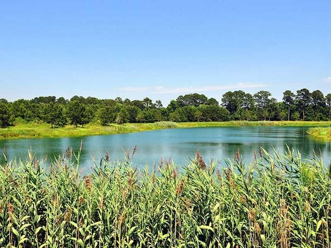 Land for sales at The Farms at Brickhouse Plantation 10 River Road Johns Island, South Carolina 29455 United States
