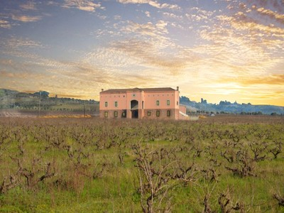 Ferme / Ranch / Plantation for sales at A touch of Tuscany in the Cape Winelands  Stellenbosch, Cap-Occidental 7600 Afrique Du Sud