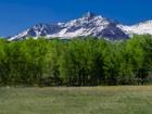 Terreno for  sales at TBD Elk Creek Road  Placerville, Colorado 81430 Estados Unidos