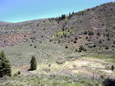 Land for sales at Elk Creek Ranch Lot 51 TBD Elk Creek Ranch Lot 51 Meeker, Colorado 81641 United States