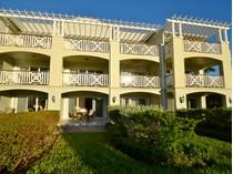 Nhà chung cư for sales at Royal West Indies - Suite 213 Royal West Indies, Grace Bay, Providenciales Quần Đảo Turks Và Caicos