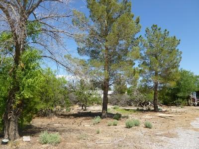 Đất đai for sales at 1811 E Thousandaire Blvd  Pahrump, Nevada 89048 Hoa Kỳ