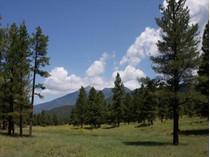 Terrain for sales at Exquisite Flagstaff Land 2601 2604 Wild Turkey   Flagstaff, Arizona 86001 États-Unis