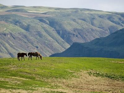 Land for sales at Ravenwing Ranch 5978 Clockum Malaga, Washington 98828 United States