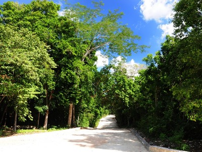 Land for sales at TULUM ECOLOGICAL LOTS  Tulum, Quintana Roo 77780 Mexico