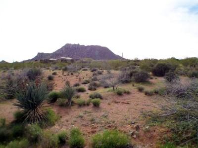Terreno for sales at Custom 3+ Acre Homesite in North Scottdsdale 26125 N 116th St #13 Scottsdale, Arizona 85255 Stati Uniti