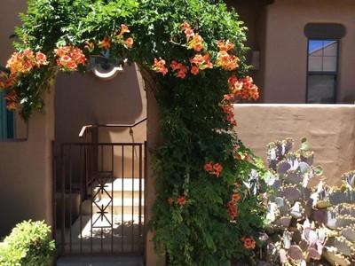 多棟聯建住宅 for sales at Well Maintained Townhome 1407 Vista Montana Rd 54 Sedona, 亞利桑那州 86336 美國