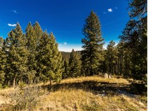 Земля for sales at 312 Ruby Forest Trail    Evergreen, Колорадо 80439 Соединенные Штаты