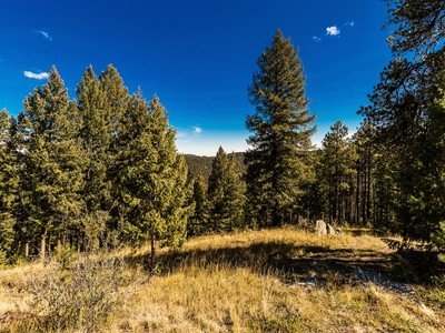 Land for sales at 312 Ruby Forest Trail  Evergreen, Colorado 80439 United States