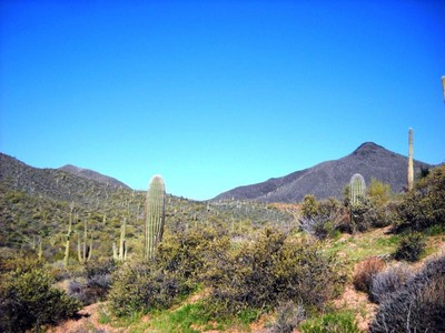 Terreno for sales at 2.5 Acre Custom Homesite In Desert Mountain's Premier Village Of Saguaro Forest 9716 E Mariola Way #284 Scottsdale, Arizona 85262 Estados Unidos