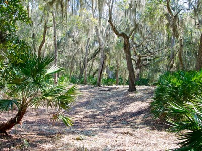 Land for sales at Belted Kingfisher Lot Lot 103 Belted Kingfisher Amelia Island, Florida 32034 United States