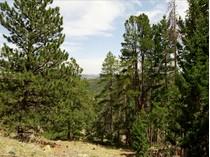 土地 for sales at 1 West Meadow Road    Evergreen, コロラド 80439 アメリカ合衆国