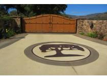 Üzüm Bağı for sales at Peaceful Oaks Ranch Vineyard 40550 De Luz Murrieta Road   Fallbrook, Kaliforniya 92028 Amerika Birleşik Devletleri