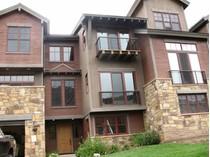 Maison de ville for sales at Sophisticated Townhouse 118 Snowmass Road Unit 23A   Mount Crested Butte, Colorado 81225 États-Unis