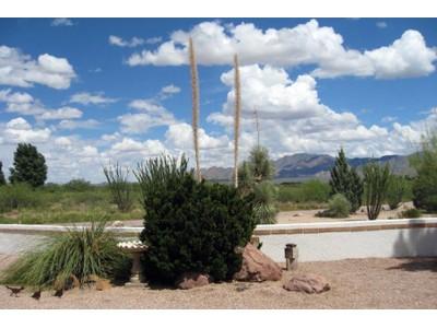 一戸建て for sales at Beautiful Home On 44 Acres In The San Simon Valley Of SE Arizona 270 W Sanford Place Portal, アリゾナ 85632 アメリカ合衆国