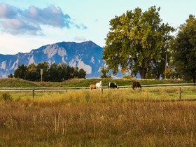 Single Family Home for sales at 1538 75th Street  Boulder, Colorado 80303 United States