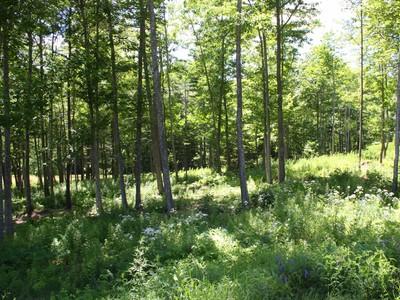 Đất đai for sales at Mountain Arrow 30 Mountain Arrow Camden, Maine 04843 Hoa Kỳ