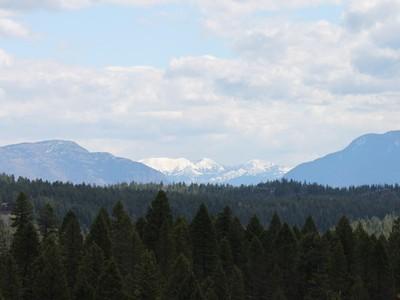地產 for sales at 7.47 Acres with Views 10 Antler Ridge Ln Whitefish, 蒙大拿州 59937 美國