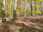 Land for sales at Stunning Land 00 Rafferty Road Lebanon, Connecticut 06249 United States
