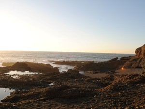 Additional photo for property listing at 0 Cabrillo Highway  Pescadero, California 94060 United States