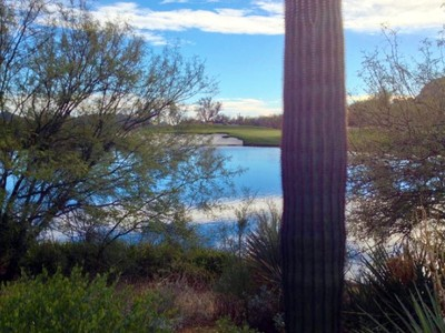 Land for sales at Spectacular View Lot in Estancia 27158 N 103rd Street #187 Scottsdale, Arizona 85262 United States