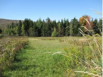 Terreno for sales at 4+ Acres  with Easy VAST access Route 155 Maple Hill Road   Mount Holly, Vermont 05758 Stati Uniti