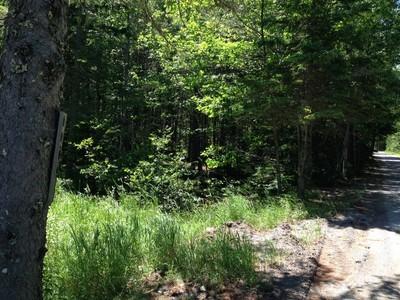 Đất đai for sales at Parker Farm Road 0 Parker Farm Road  Mount Desert, Maine 04660 Hoa Kỳ