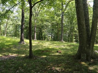 土地,用地 for sales at Lovely Bucolic Property 139 Lords Highway Weston, 康涅狄格州 06883 美国