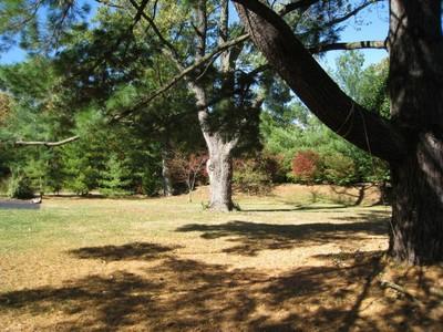 Terrain for sales at Beautiful one acre lot 11440 Clayton Road Frontenac, Missouri 63131 États-Unis