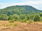 Land for  sales at 2540 Rio Lindo Avenue  Healdsburg, California 95448 United States