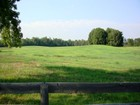 Land for sales at Equestrian Estate Lot 1539 Bear Creek Road Lot #2  Moreland, Georgia 30259 Vereinigte Staaten